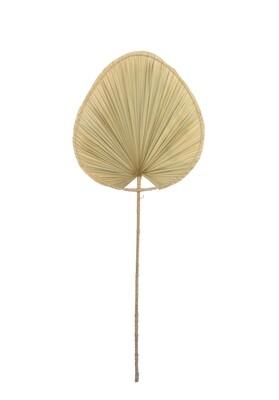 Palm Leaf Art 2 (l)