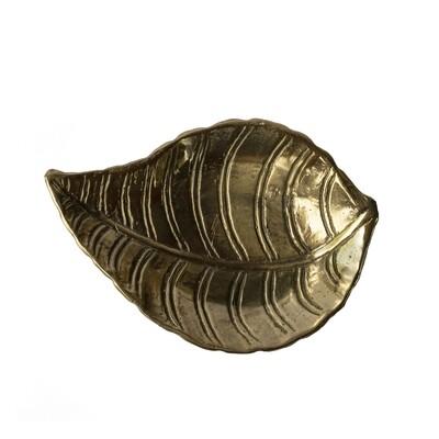 Brass Tray 2 (shell)