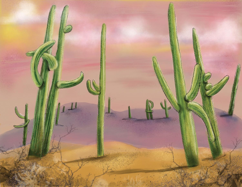 """8.5 x 11 framable print """"Saguaros"""""""