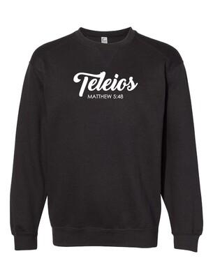 Teleios Script - The Well - Adult - Unisex - Sweatshirt