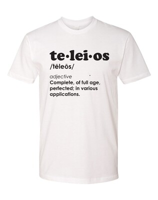 Teleios Defined - The Well - Adult - Unisex - T-Shirt