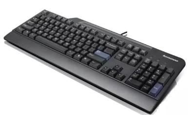 89P8300 | Lenovo PS2 KeyBoard Black