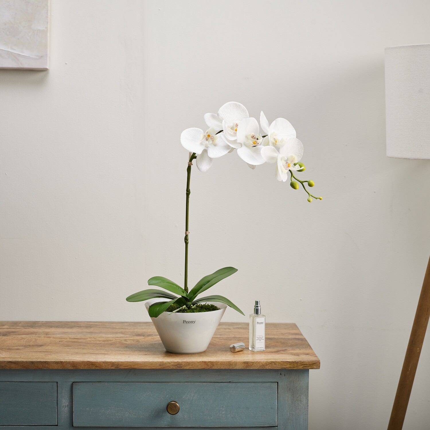 ORCHID IN A BOWL WITH 25ML WILD ORCHID SPRAY