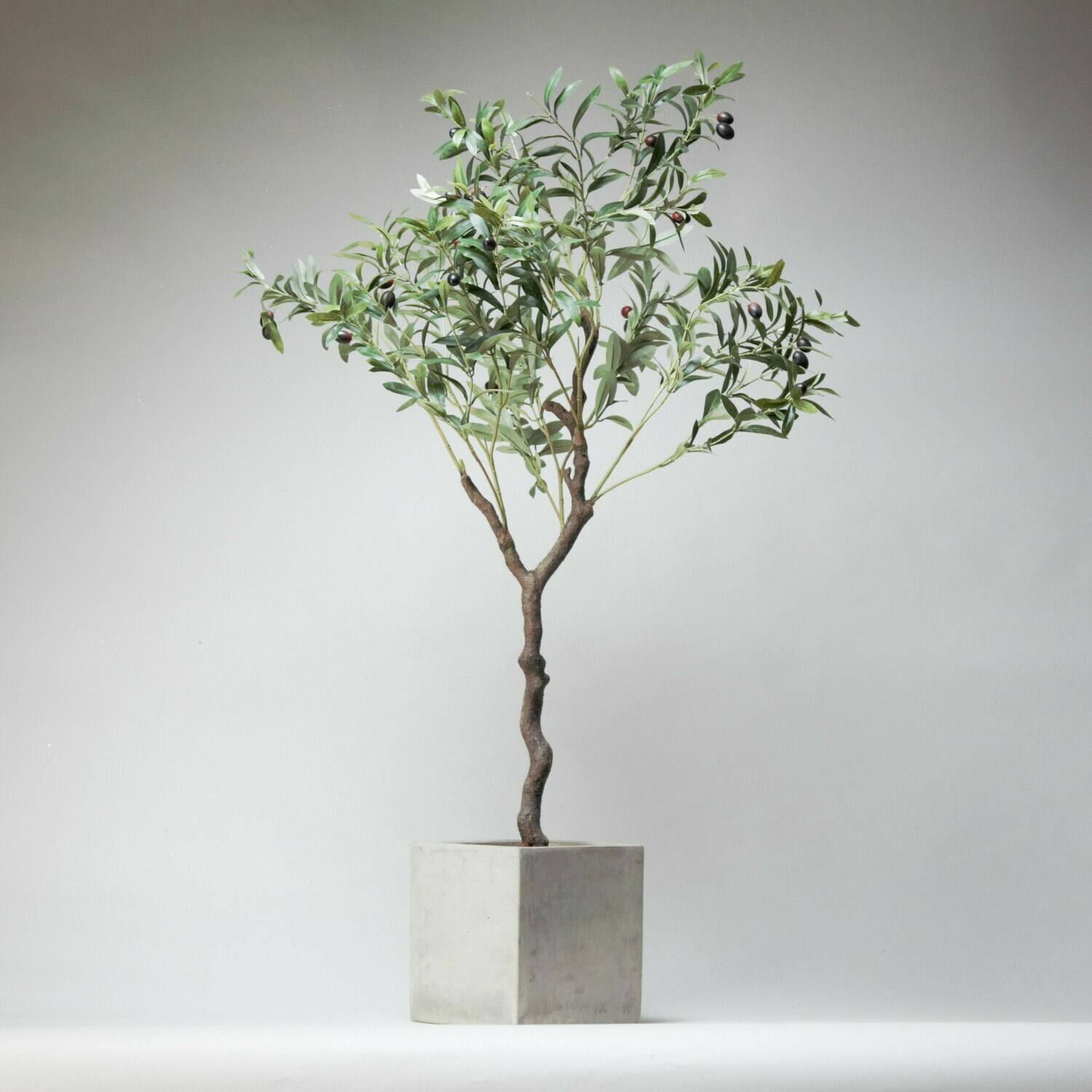 Artificial Olive tree in grey cement planter with bark