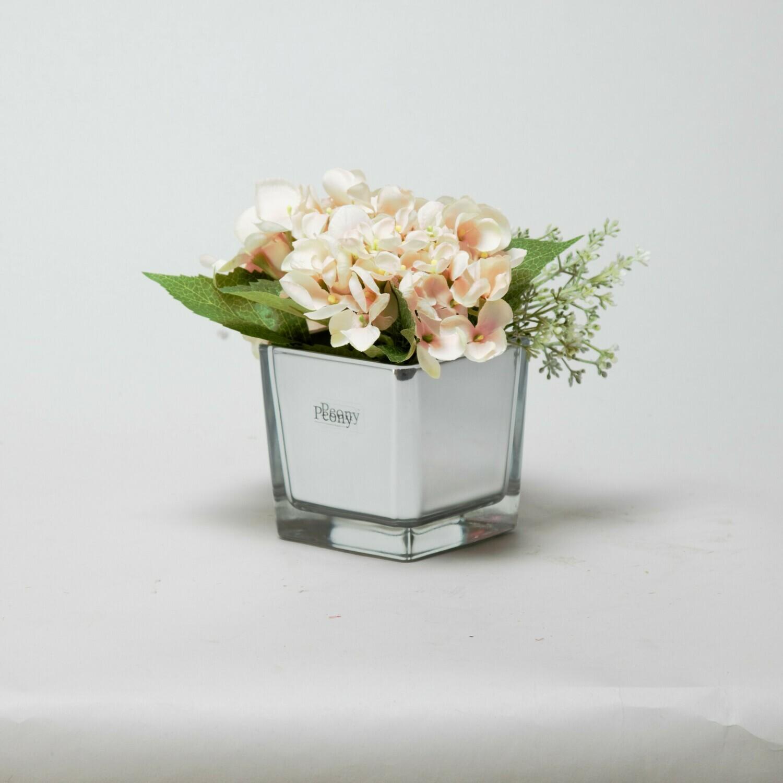 Peach Hydrangea and Eucalyptus seed in a mirror cube