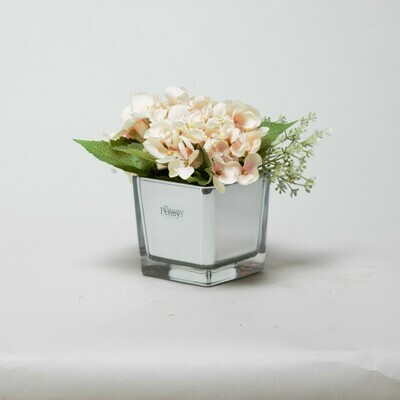 Peach Hydrangea and Eucalyptus seed in a mirror cube