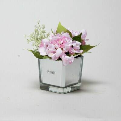 Pink Hydrangea and Eucalyptus seed in a mirror cube
