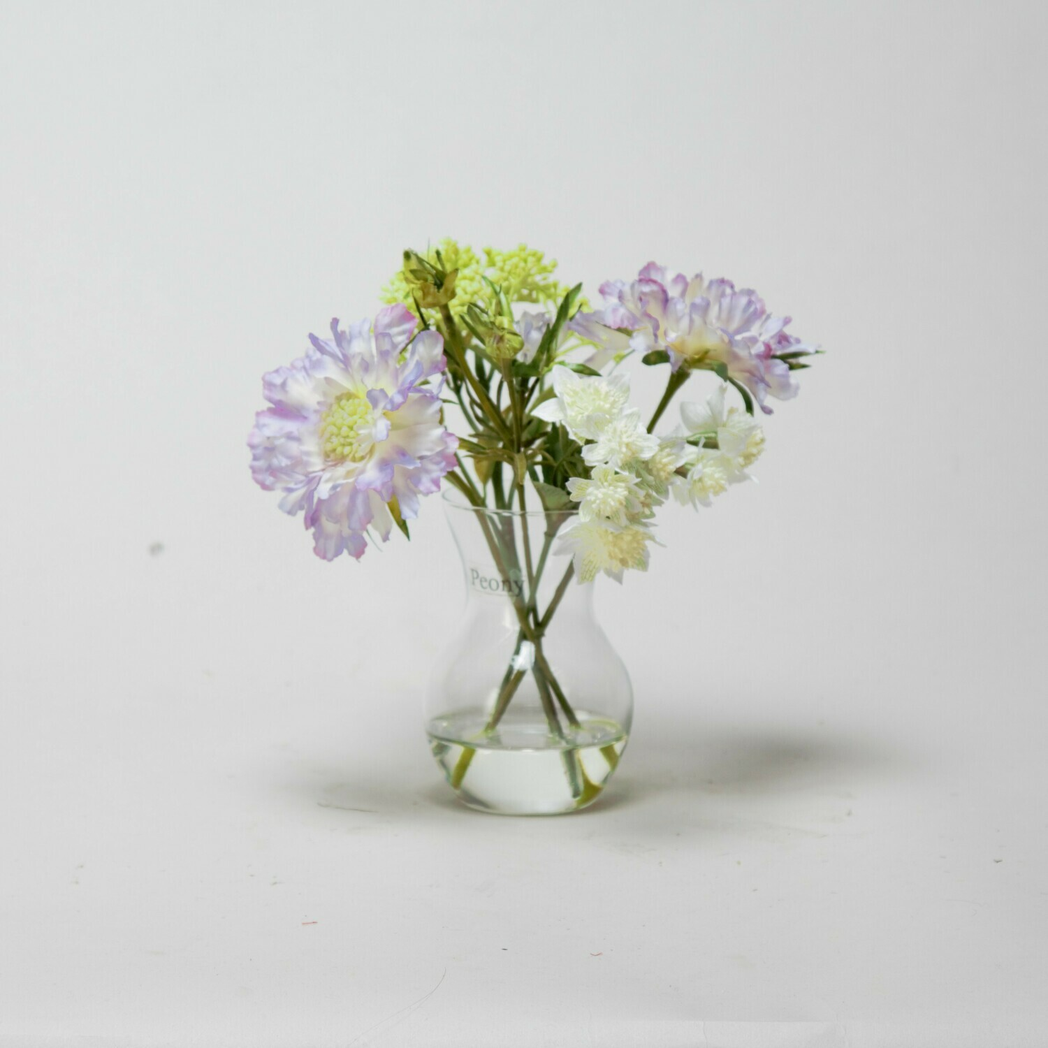 Scabiosa and Astrantia in a pristina vase