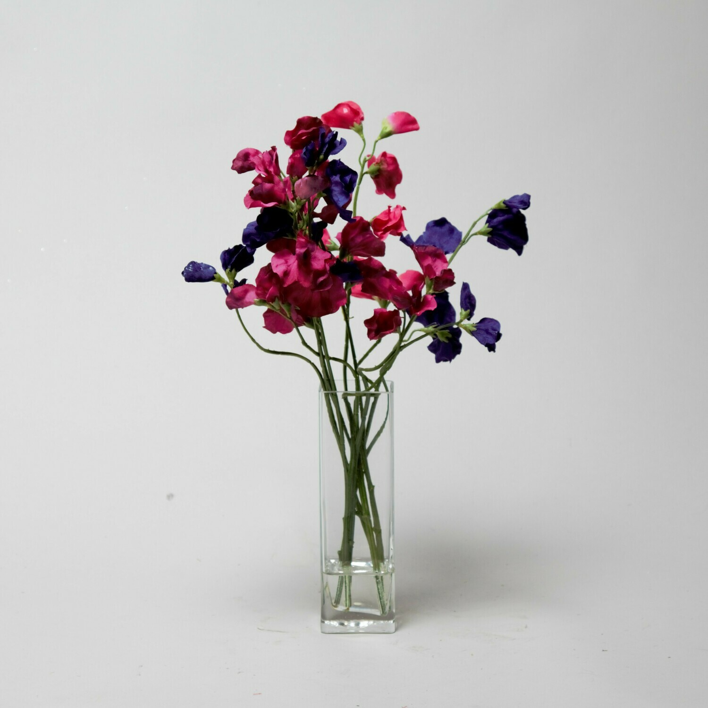 Dark pink and purple Sweet peas in a tall bud vase
