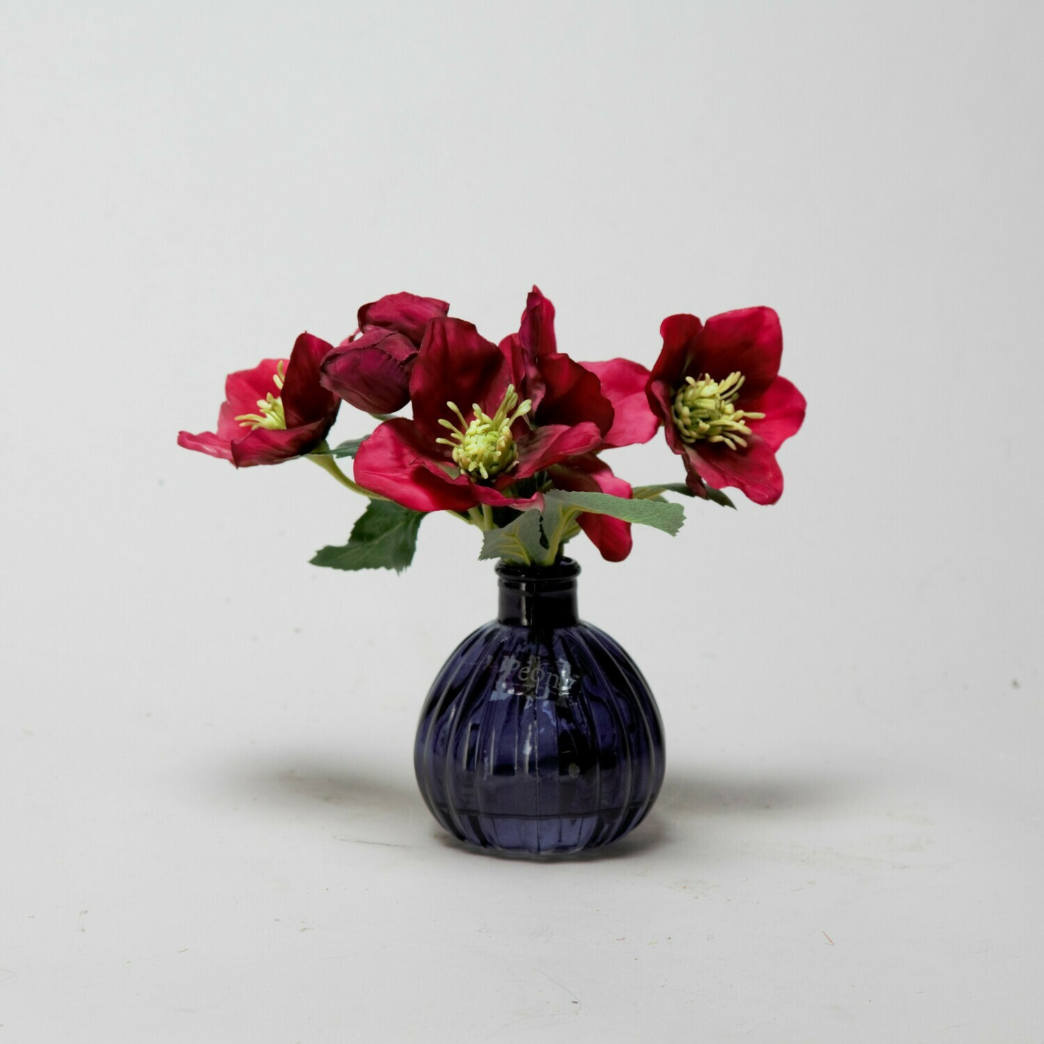 Magenta Hellebores in a black bottle