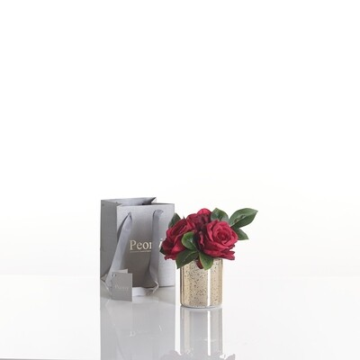 Roses in a Gold Cylinder with Lights