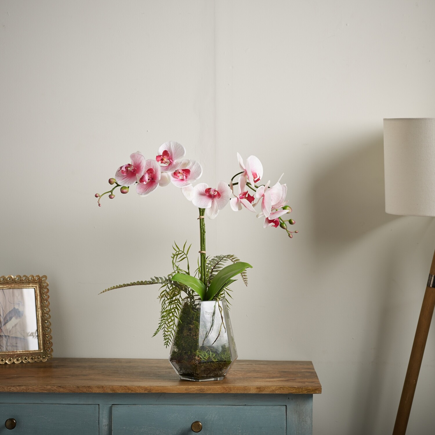 PHALAENOPSIS ORCHID IN A GEOMETRIC GLASS VASE