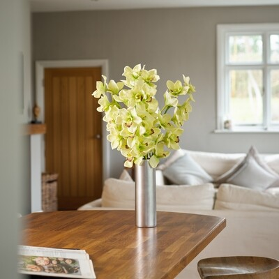 Cymbidium Orchids in a Silver Ceramic Cylinder