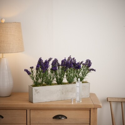 Lavender Window Planter with 100ml Lavender Fragrance Spray