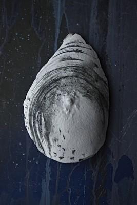 Блюдце // Saucer // Грудь