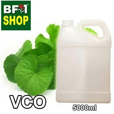 VCO - Centella Asiatica ( Pegaga ) Virgin Carrier Oil - 5000ml
