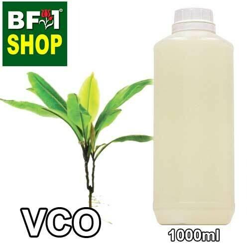VCO - Labisia Pumila ( Kacip Fatimah ) Virgin Carrier Oil - 1000ml