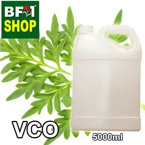 VCO - Cosmos Caudatus ( Ulam Raja ) Virgin Carrier Oil - 5000ml