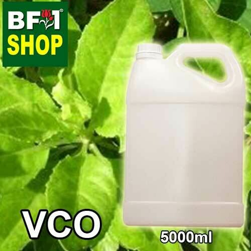 VCO - Daun Dewa ( Sambung Nyawa ) Virgin Carrier Oil - 5000ml