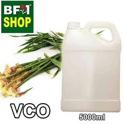 VCO - Ginger Leaf Virgin Carrier Oil - 5000ml