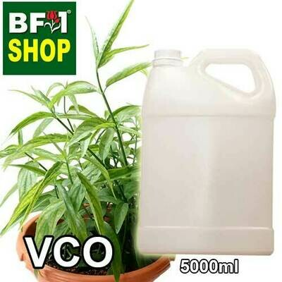 VCO - Snake Grass Virgin Carrier Oil - 5000ml