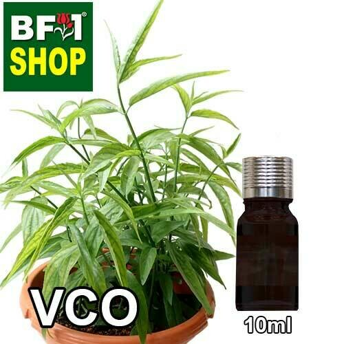 VCO - Snake Grass Virgin Carrier Oil - 10ml