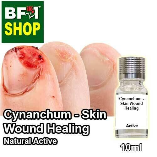 Active - Cynanchum - Skin Wound Healing Active - 10ml