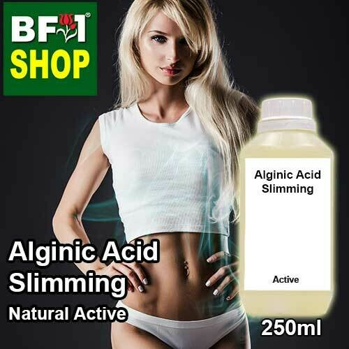 Active - Alginic Acid Slimming Active - 250ml