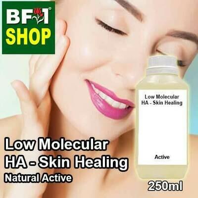 Active - Low Molecular HA - Skin Healing Active - 250ml