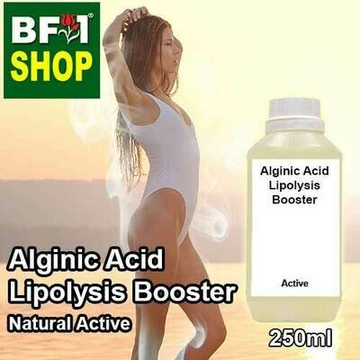 Active - Alginic Acid Lipolysis Booster Active - 250ml