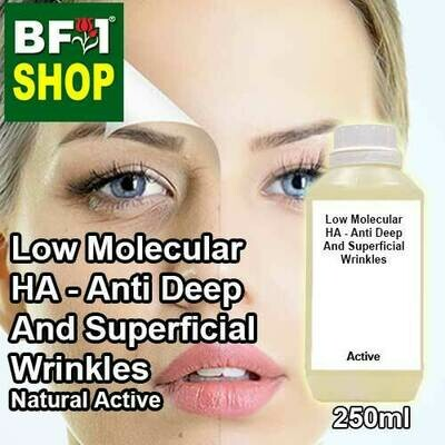 Active - Low Molecular HA - Anti Deep And Superficial Wrinkles Active - 250ml