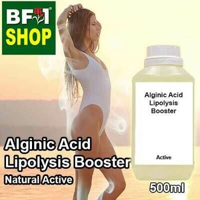 Active - Alginic Acid Lipolysis Booster Active - 500ml