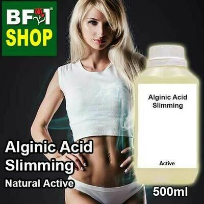Active - Alginic Acid Slimming Active - 500ml