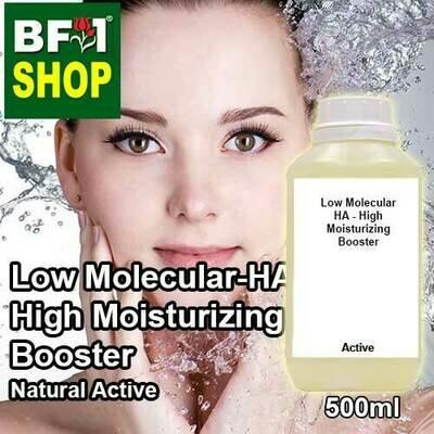 Active - Low Molecular HA - High Moisturizing Booster Active - 500ml