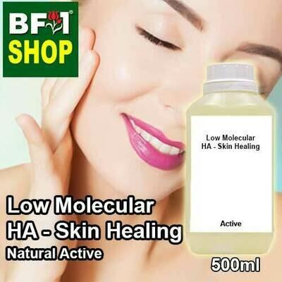 Active - Low Molecular HA - Skin Healing Active - 500ml