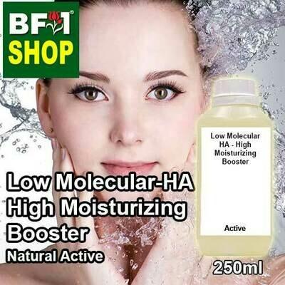 Active - Low Molecular HA - High Moisturizing Booster Active - 250ml