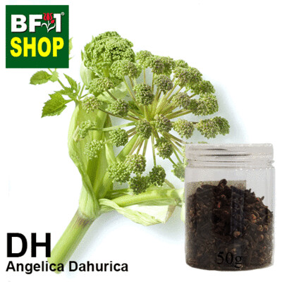 Dry Herbal - Angelica Dahurica - 50g
