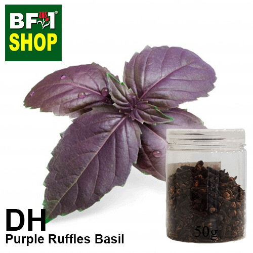 Dry Herbal - Basil - Purple Ruffles Basil - 50g