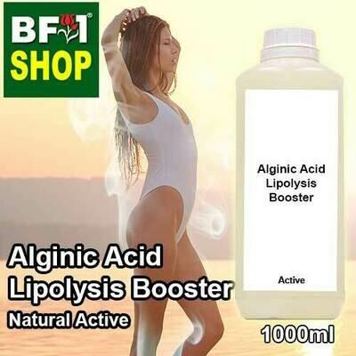 Active - Alginic Acid Lipolysis Booster Active - 1L