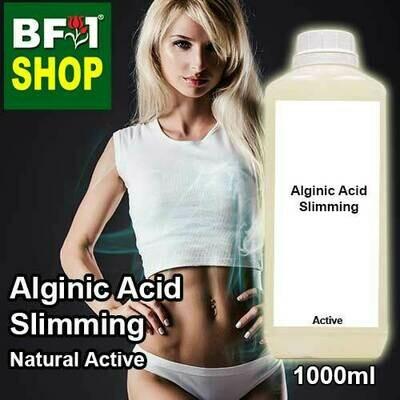 Active - Alginic Acid Slimming Active - 1L