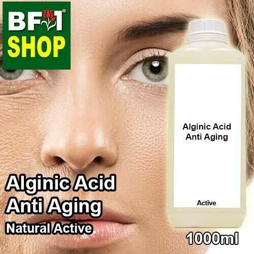 Active - Alginic Acid Anti Aging Active - 1L