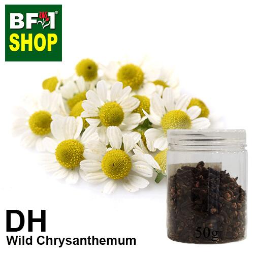 Dry Herbal - Chrysanthemum - Wild Chrysanthemum - 50g