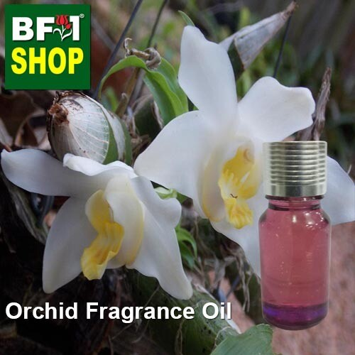 Orchid Fragrance Oil-Baby orchid > Chysis-10ml