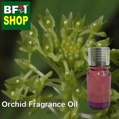 Orchid Fragrance Oil-Adder's-mouth [Green] > Malaxis uniflora-10ml