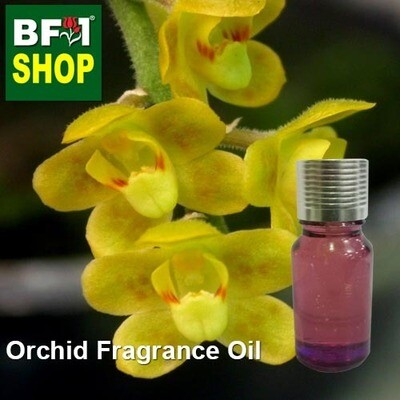 Orchid Fragrance Oil-Angel without leaves > Chilochista-10ml