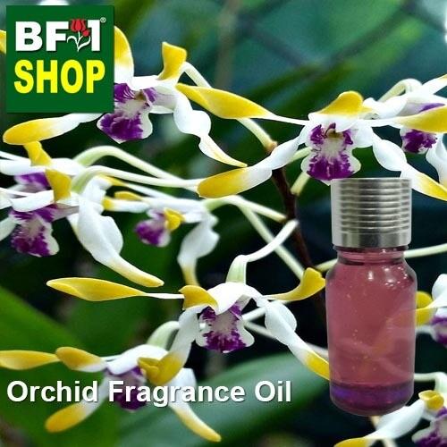 Orchid Fragrance Oil-Antelope orchid (Australia) > Dendrobium canaliculatum-10ml