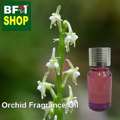 Orchid Fragrance Oil-Adder's-mouth [Narrow] > Malaxis monophyllos var. brachypoda-10ml