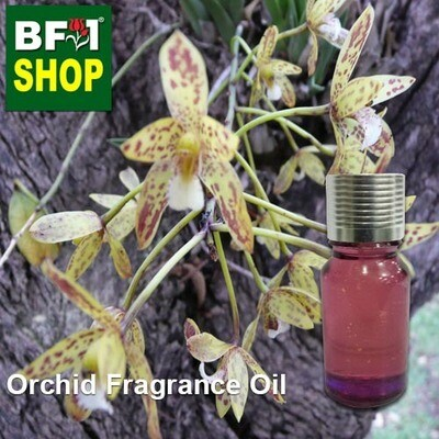 Orchid Fragrance Oil-Banana orchid (Australia) > Cymbidium canaliculatum-10ml