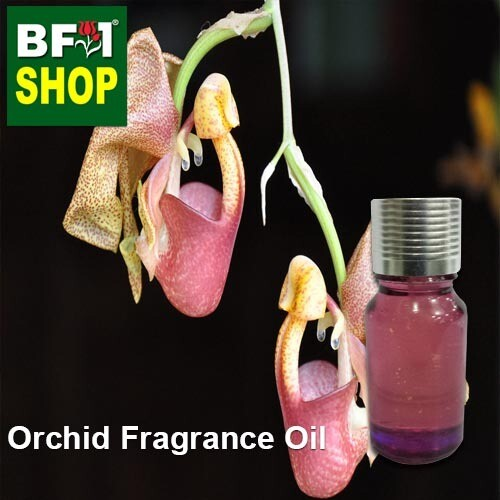 Orchid Fragrance Oil-Bat orchid > Coryanthes speciosa-10ml