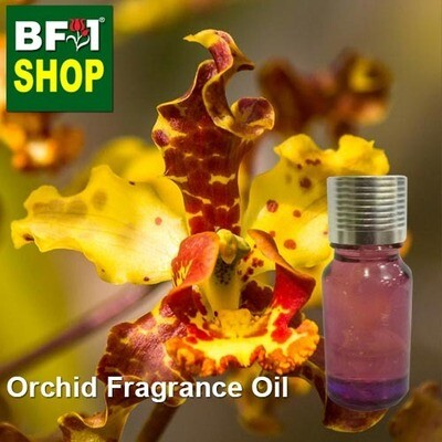 Orchid Fragrance Oil-Bee swarm orchid > Cyrtopodium punctatum-10ml
